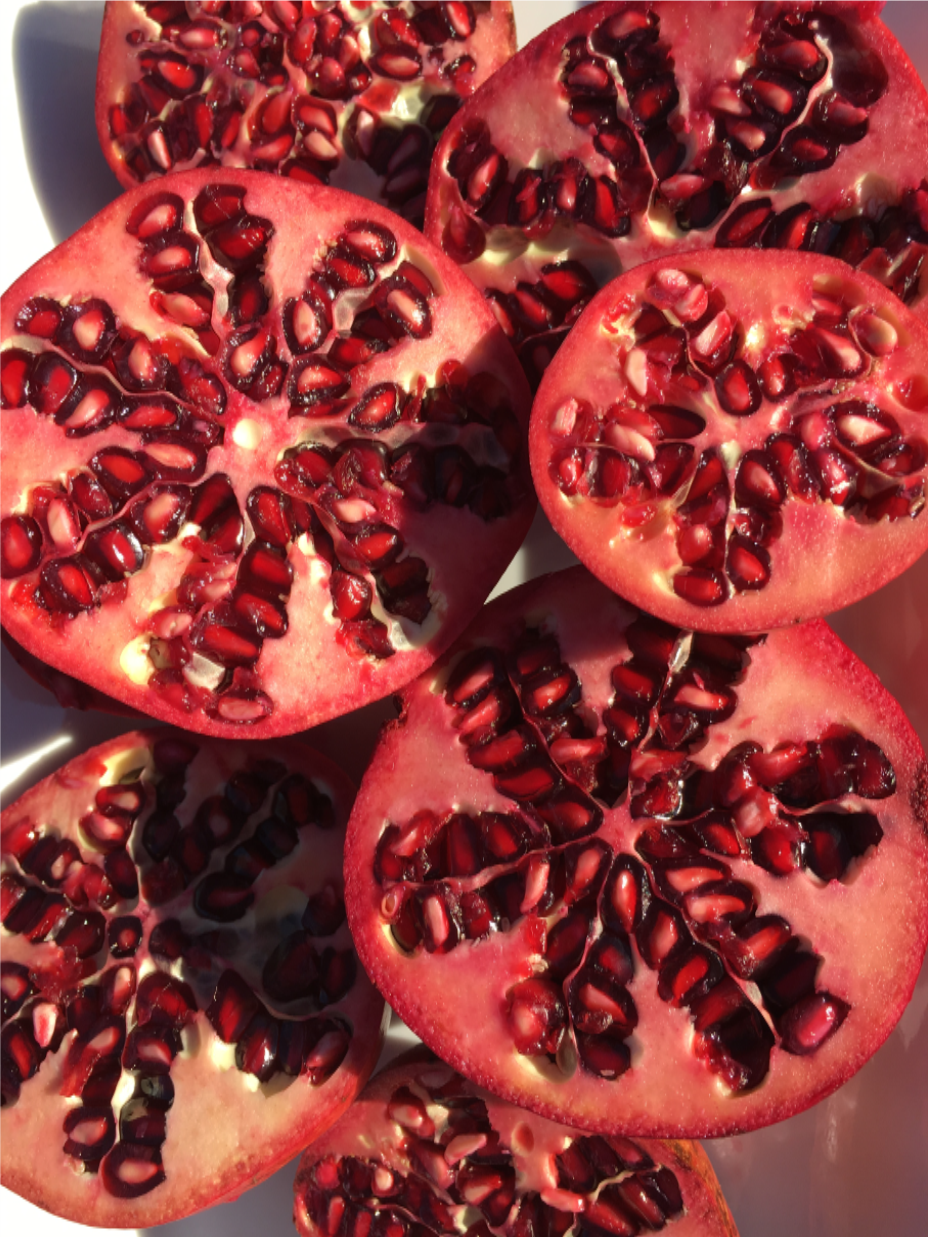 POMEGRANETS The Jewels of Christmas